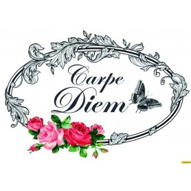 Transfers Cadence HOME DECOR Carpe Diem